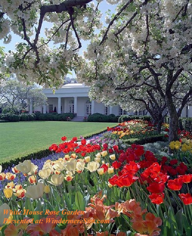 White House Rose Garden-2 final