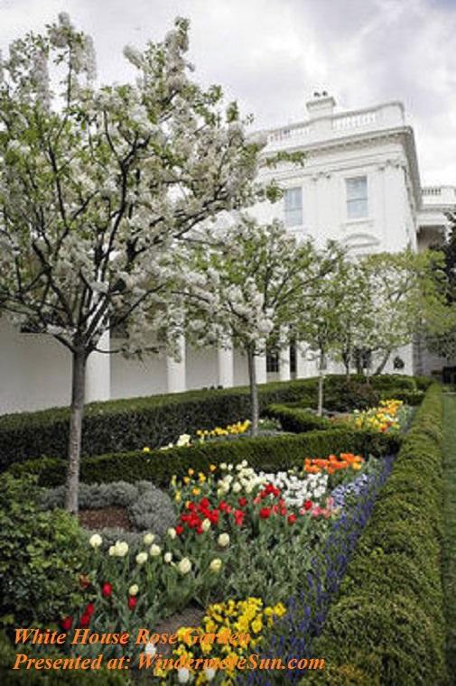 White_House_Rose_Garden-1 final
