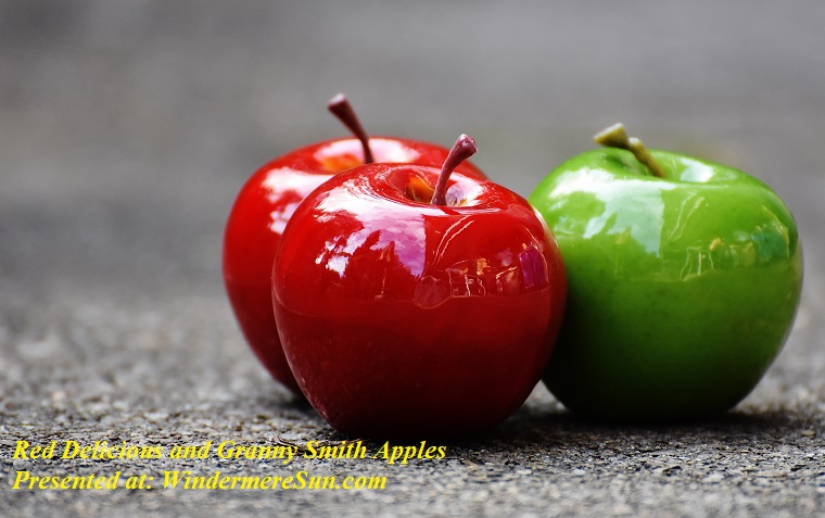apples-close-up-delicious-209339, red delicious and granny smith apples final