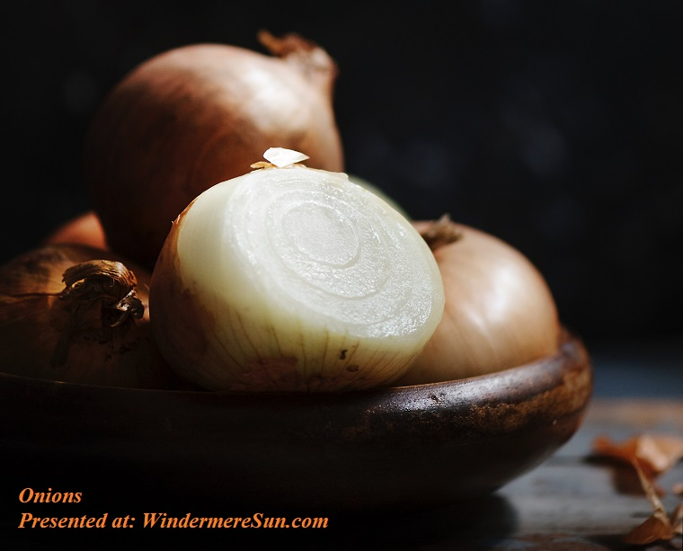 onions, close-up-colors-dark-1446269 final
