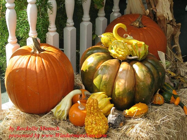 autumn-tableau-1565364, freeimages, by Rockelle Munsch final