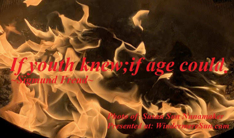 Quote of 1-4-2020, If youth knew;if age could. Quote of Sigmund Freud, Photo of Susan Sun Nunamaker final