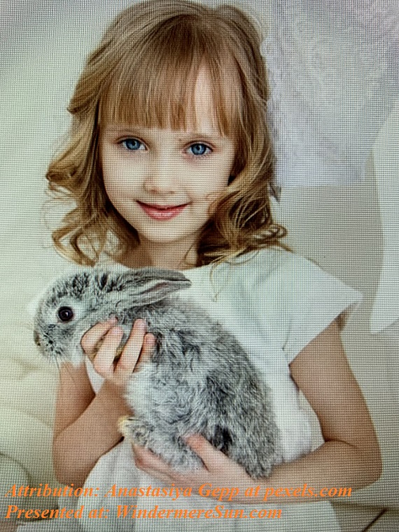 Pet of 4-11-2020, Easter bunny rabbit in a girl's hand, attribution-Anastasiya Gepp at pexels final