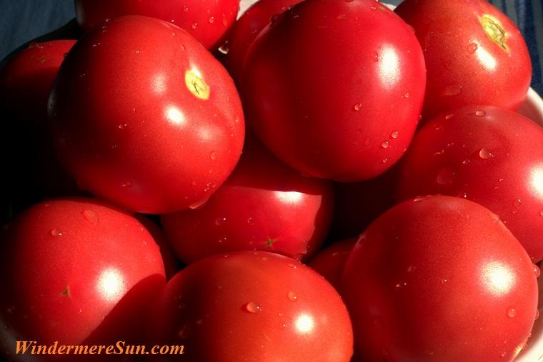beautiful tomatoes, pexels-photo-257292 final